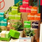 ついに日本でも脱プラスチック!世界的エシカルコスメブランド「ethique(エティーク)」のシャンプーバー日本初上陸!
