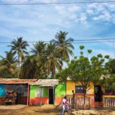常夏のカリブ海に暮らす人たちは、なぜ夏バテしないのか?その秘密は・・・