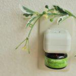 アロマの爽やかな香りを感じながら虫よけも期待できる優れもの!plugaroma バズオフリキッド エクストラセット